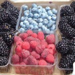 Fresh blackberries, blueberries and red raspberries all need special care.
